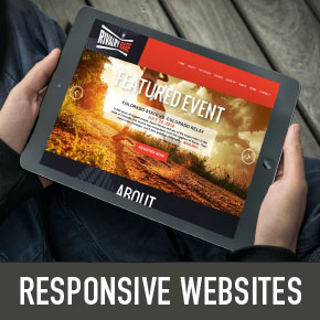 Website design, develop and maintain in Mesa, Gilbert Chandler AZ